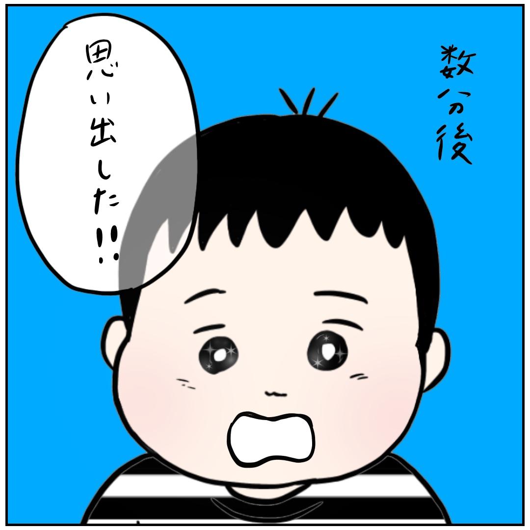 f:id:kaco-matsu:20190610142846j:plain