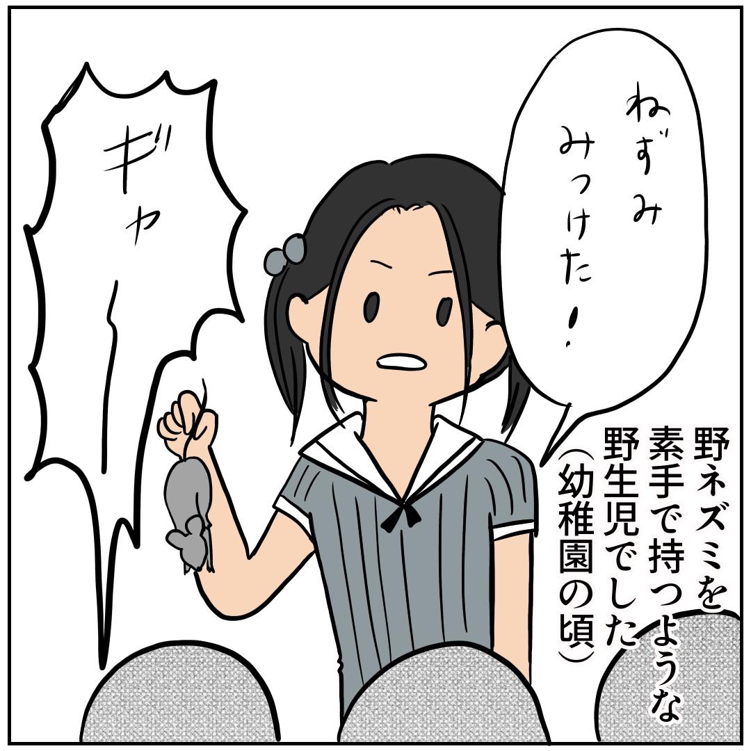 f:id:kaco-matsu:20190730171720j:plain