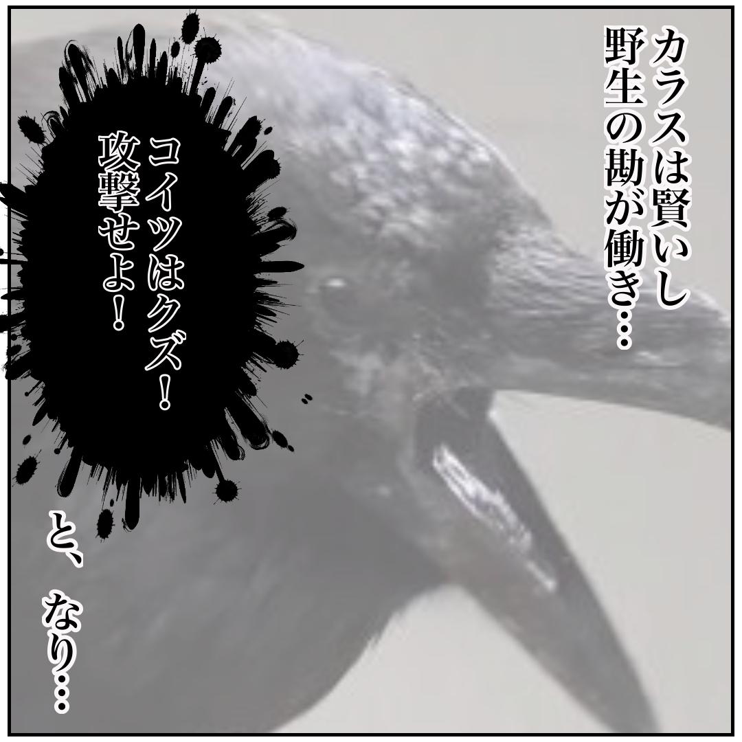f:id:kaco-matsu:20200210190608j:plain