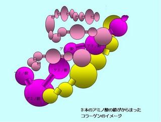 f:id:kaede18:20060110065017j:image