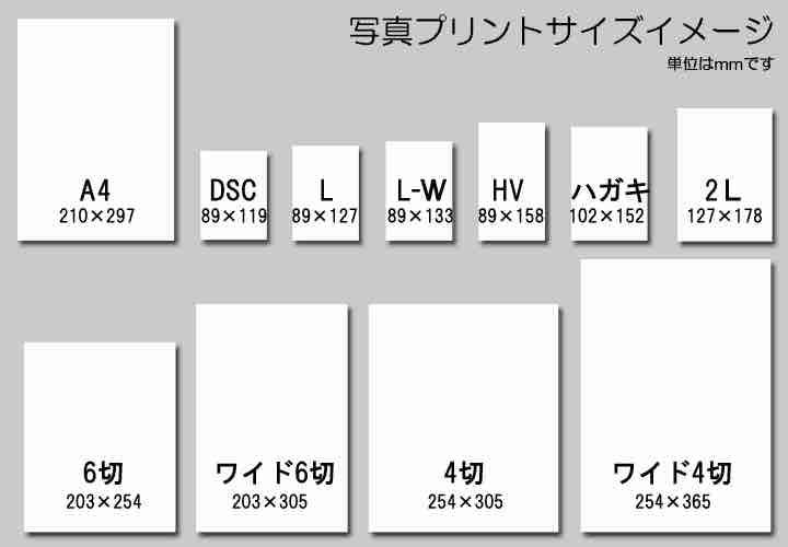 f:id:kaedetaniyoshi:20180809193625j:plain