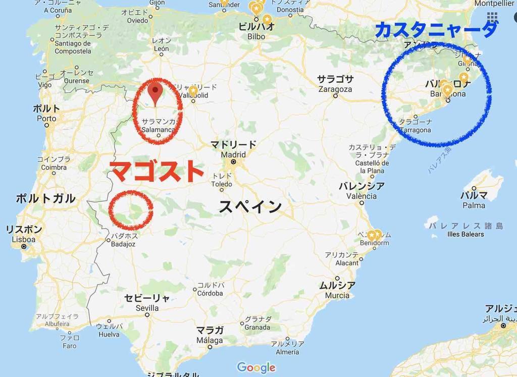f:id:kaedetaniyoshi:20181028201111j:plain