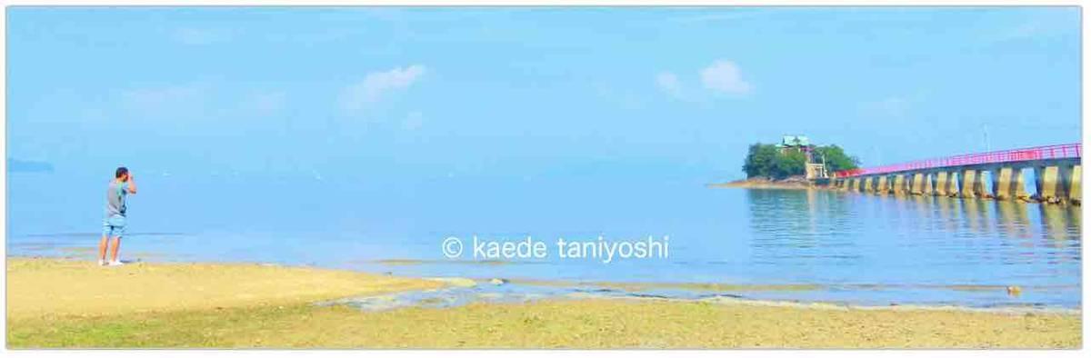 f:id:kaedetaniyoshi:20190930014954j:plain