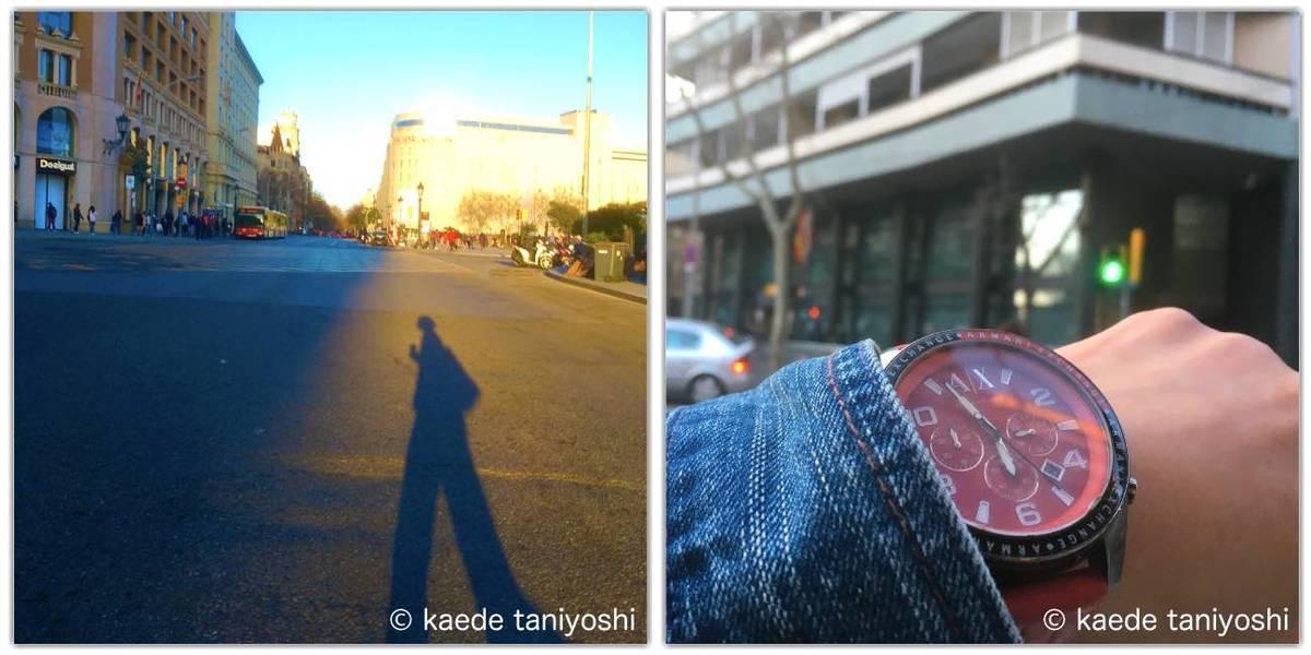 f:id:kaedetaniyoshi:20210225081934j:plain