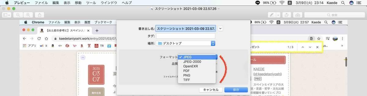 f:id:kaedetaniyoshi:20210310071622j:plain