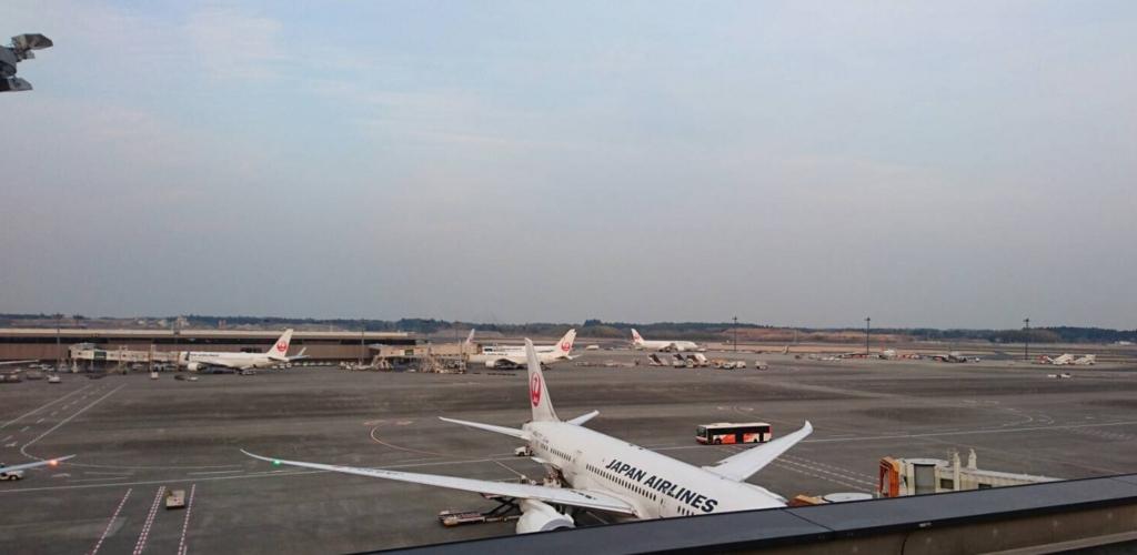JAL成田上海便