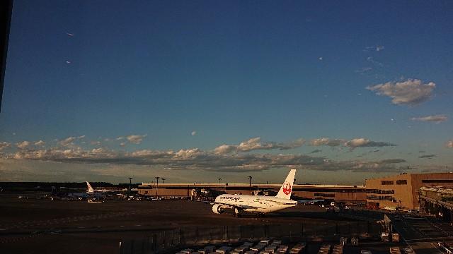 成田空港JAL