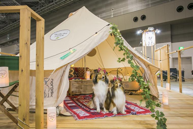 テントでのペットとの過ごし方を提案するコーナー