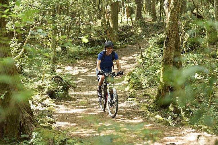 涼しい森の中をマウンテンバイクで走る様子