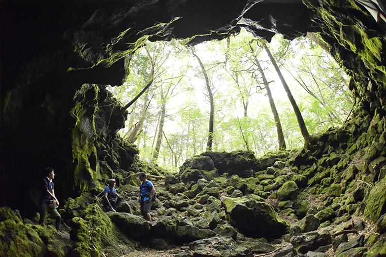 樹海の中に点在する洞穴