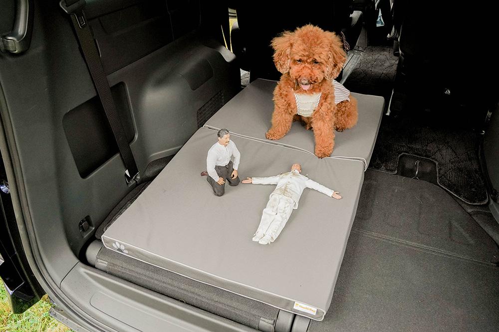 Honda Dogのペットフロアクッションでリラックスするトイプードルのココアちゃんとヨシダさん、ミフネさん