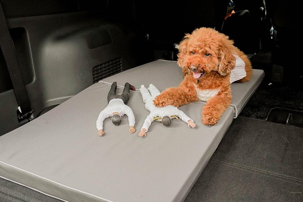 Honda Dogのペットフロアクッションに寝転んでいるヨシダさんとミフネさん、ミフネさんの上に手を置くトイプードルのココアちゃん