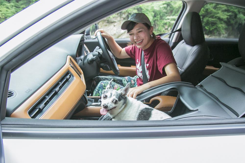 VEZEL(ヴェゼル)の運転席にいるリンさん、助手席にはペットの犬