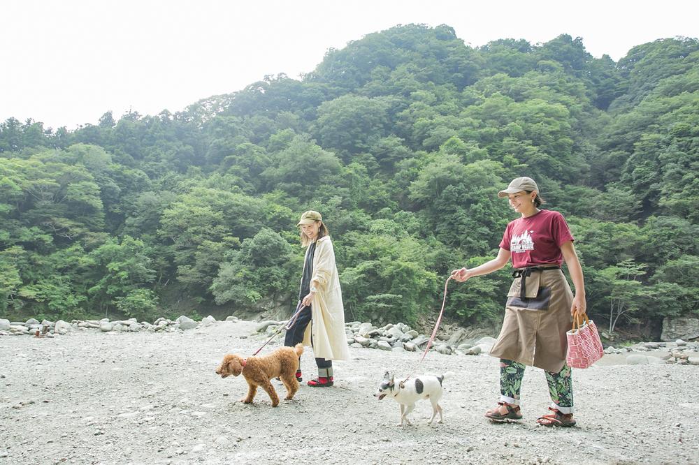 キャンプ場で犬を連れてお散歩