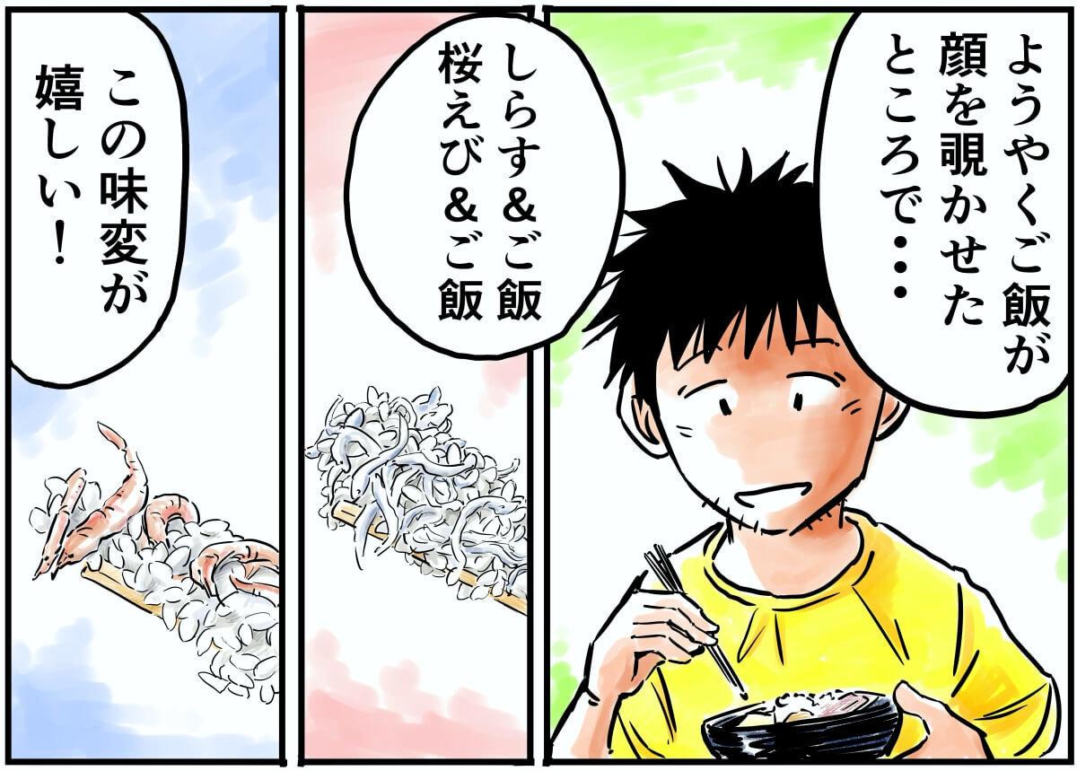 ようやくご飯が顔を覗かせたところで…しらす&ご飯、桜えび&ご飯、この味変が嬉しい!