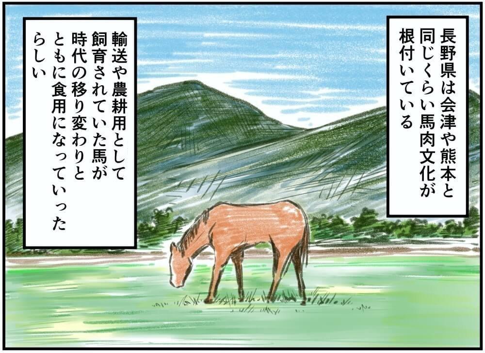長野県は会津や熊本と同じくらい馬肉文化が根付いている。輸送や農耕用として飼育されていた馬が時代の移り変わりとともに食用になっていったらしい