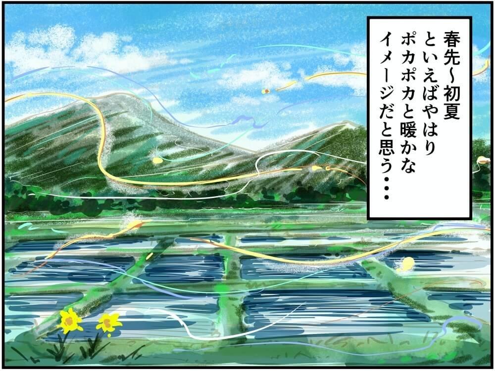 初夏のぽかぽか陽気な田んぼの光景イラスト