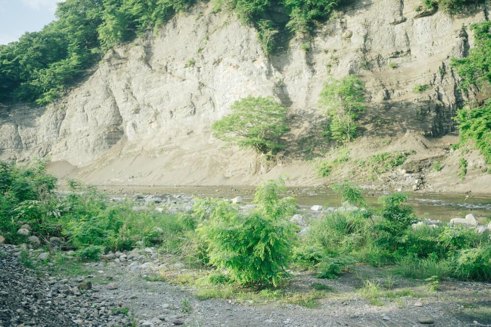 埼玉県のオートキャンプ場「秩父巴川オートキャンプ場」の川辺の画像
