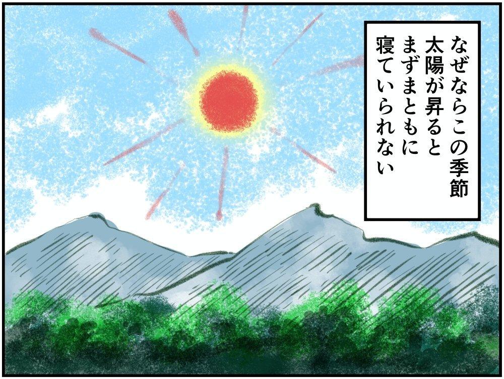 真夏の日中のイラスト