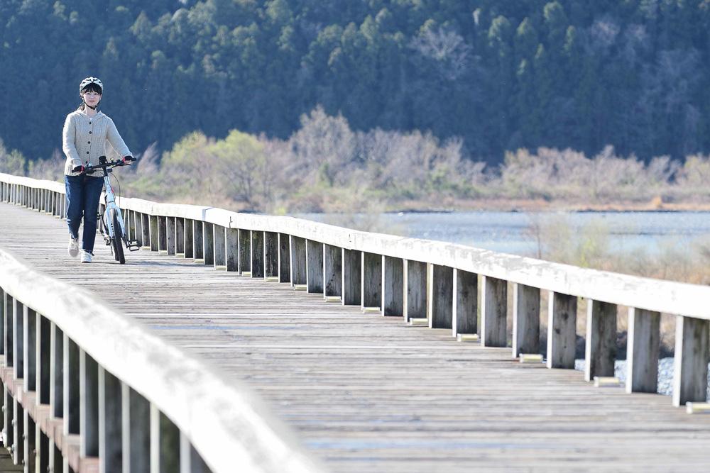 大井川にかかる世界一長い木造歩道橋の「蓬莱橋」。蓬莱橋では自転車を押して渡ります