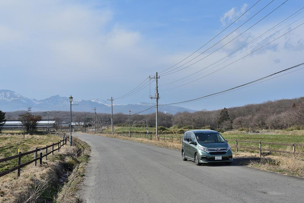 沿道には牧場が広がりドライブも楽しそう!