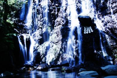 f:id:kaeru_geko:20090502000551j:image