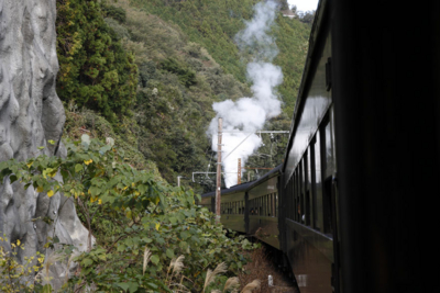f:id:kaeru_geko:20111115001606j:image