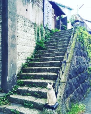 f:id:kaeru_geko:20160830152323j:image