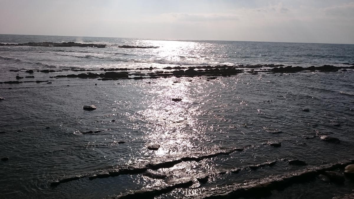f:id:kaerubu:20191222200343j:plain