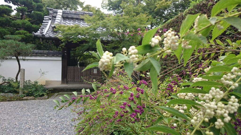 f:id:kafu-kai:20160924195443j:plain
