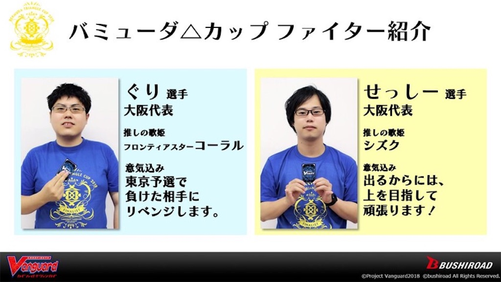 f:id:kagami_setsuna:20180821212335j:image