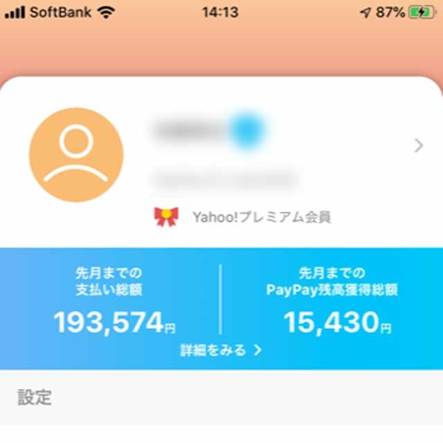 【マネー】PayPayってどのくらいお得なの?8ヶ月使ってみた結果を発表!【
