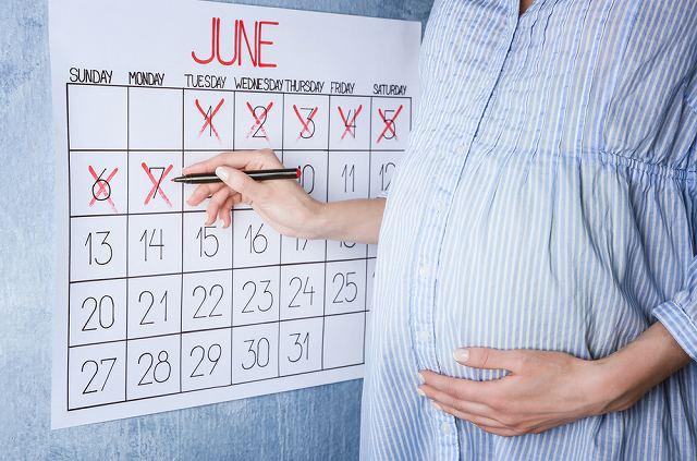 妊娠周期の見方