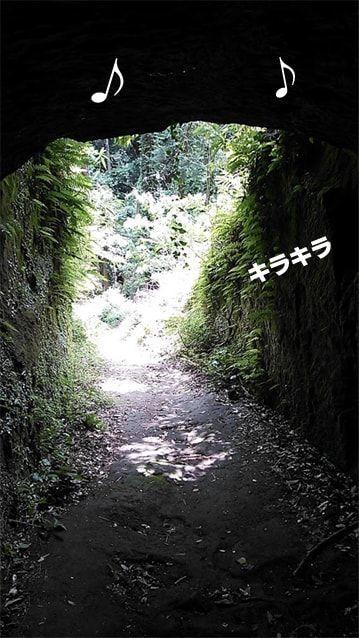 f:id:kagetora5:20190522164341j:plain