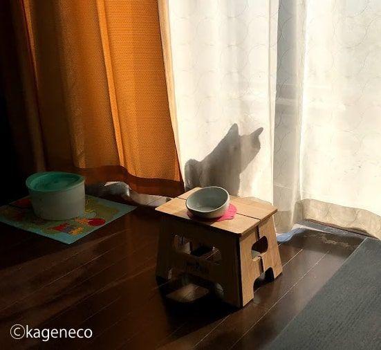 カーテンに猫のシルエットが伸びている写真