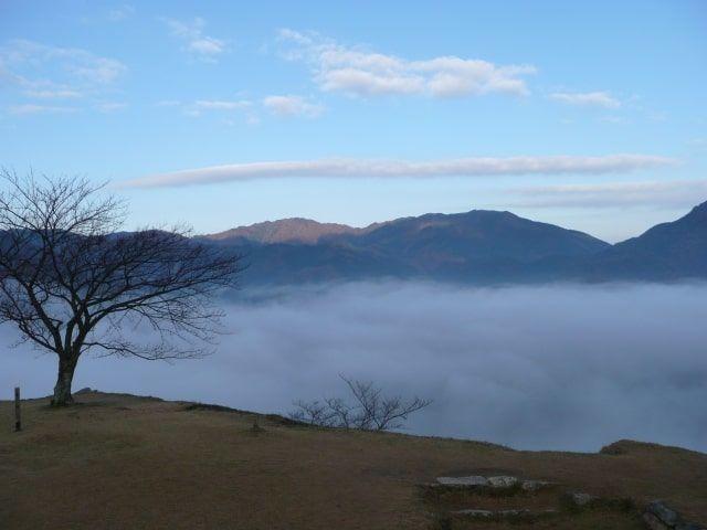 山から眺める見事な雲海