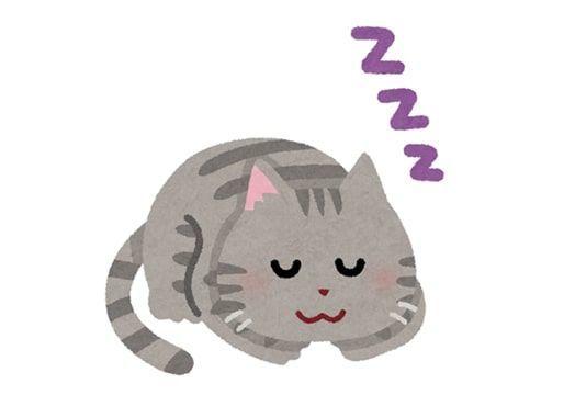 眠っているグレーの猫の絵