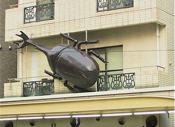 かっぱ橋で見つけた大カブトムシ