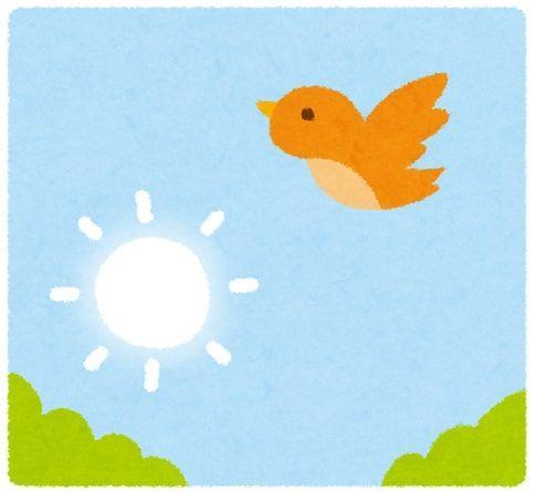青空に朝日と鳥が飛ぶイラスト