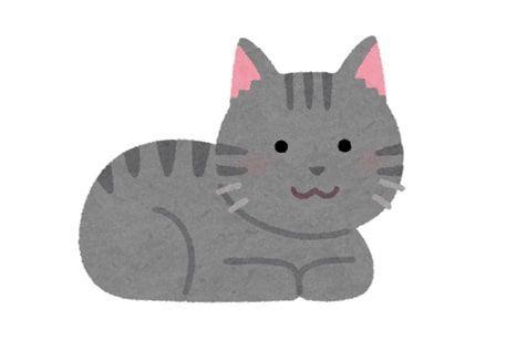 グレーの猫が座りこちらを見ているイラスト