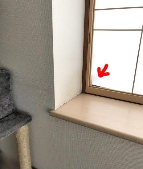 猫が寄りかかるので障子が剥がれている窓際