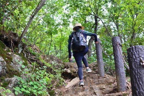 登山道を登る山ガールの後ろ姿