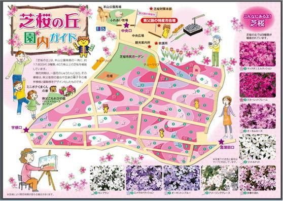 芝桜の丘園内ガイドマップ