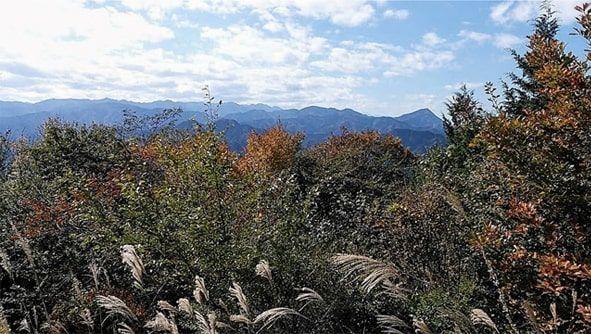 関八州見晴台関からの景色
