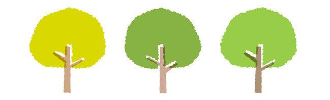 丸い形をした三本の緑色の木のイラスト