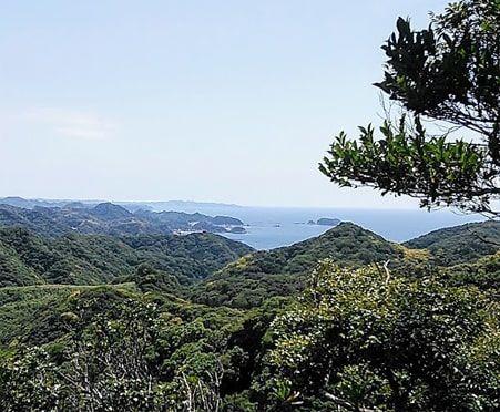 沢コース途中から見える東京湾