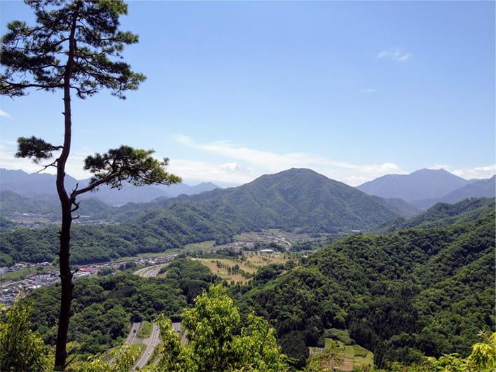 岩殿山から望む富士山