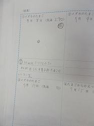 f:id:kagiyas:20200708192141j:plain