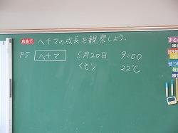 f:id:kagiyas:20210520204557j:plain