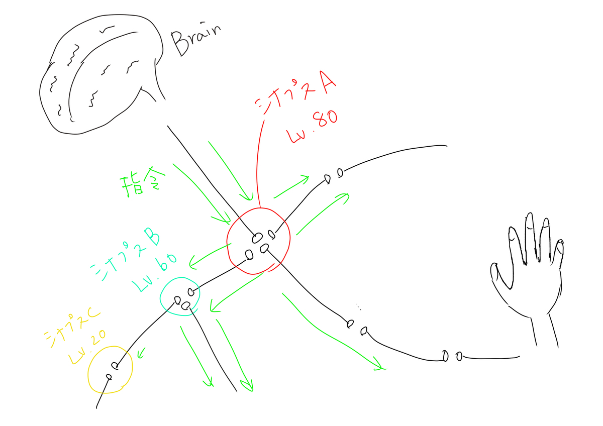 f:id:kago486:20190508011827j:plain